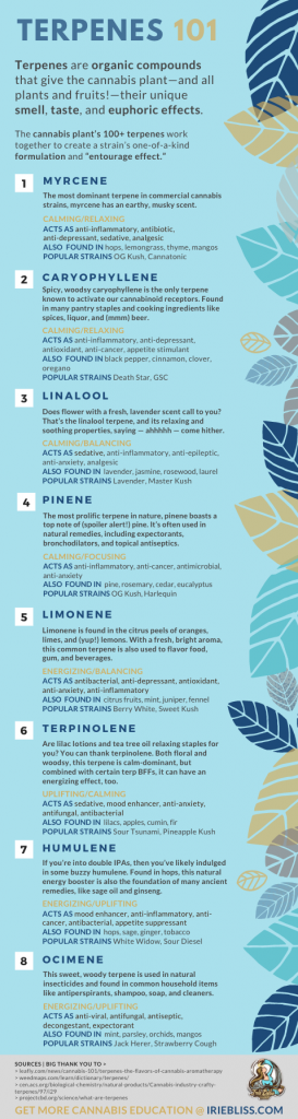 What Are Terpenes? Infographic Irie Bliss CBD